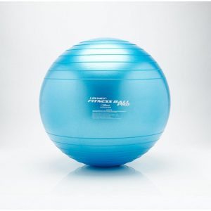 TheraKit Pro Fitness Ball